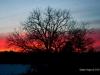 sunset-at-the-lake