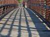 Afternoon Bridge
