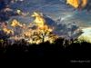 Evening Sky #3